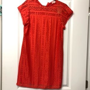 Brand new Francesca's scarlet red lace dress